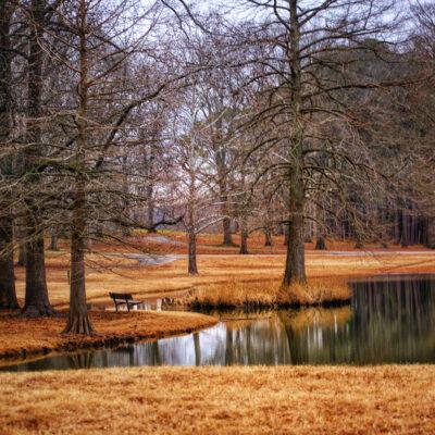 Murphysboro Lake
